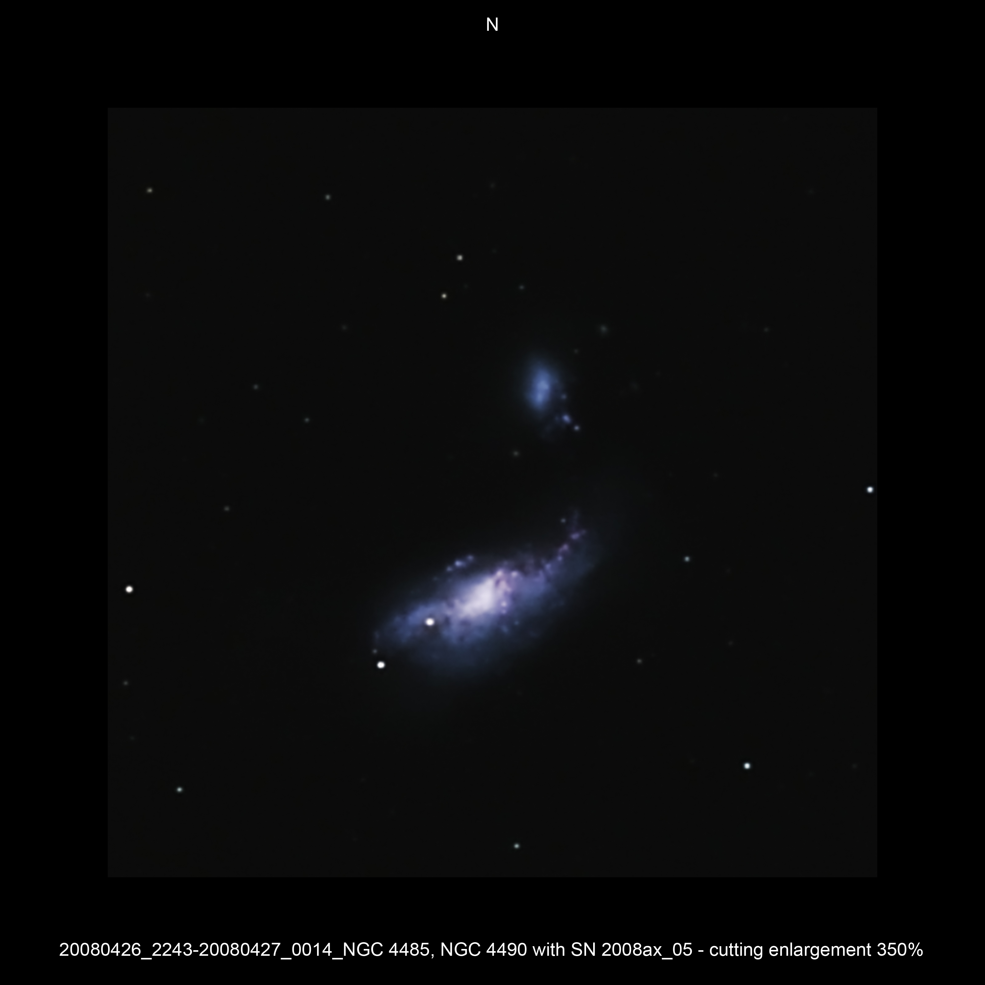 20080426_2243-20080427_0014_NGC 4485, NGC 4490 with SN 2008ax_05 - cutting enlargement 350pc.JPG -  CVn Newton d 309,5 / af 1623 & Coma Corrector CANON-EOS5D (AFC-Filter) 800 ASA no add. filter 8 light-frames 360s, auto dark, 3 flat, 10 bias Guidemaster, DSS, Canon-RAW-Image, Adobe-PS-CS3 SN2008AX